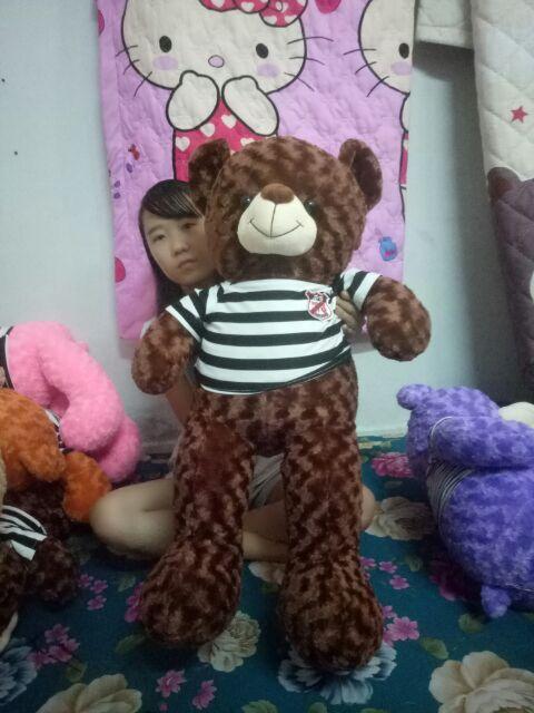 Gấu tetdy khổ vải 1m