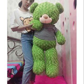 Teddy Size 1m2