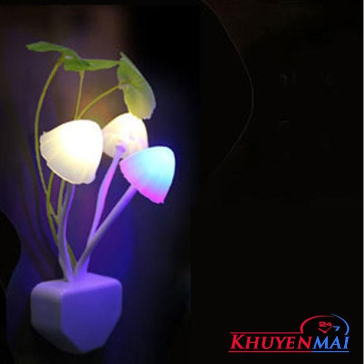 Đèn ngủ hình chậu hoa có cảm ứng đa dạng mẫu