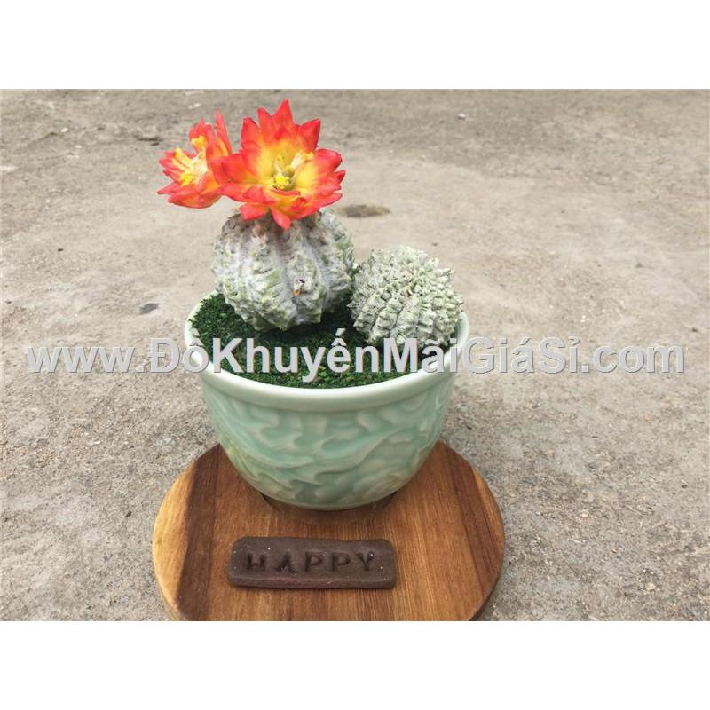 Chậu xương rồng tròn hoa đỏ mini bằng đất sét Handmade - Kt: (15 x 8 x 8) cm.