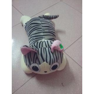Chú Mèo lười xinh