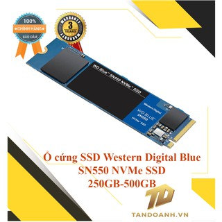 Ổ cứng SSD Western Digital Blue M.2 SN550 NVMe SSD 250GB - 500GB