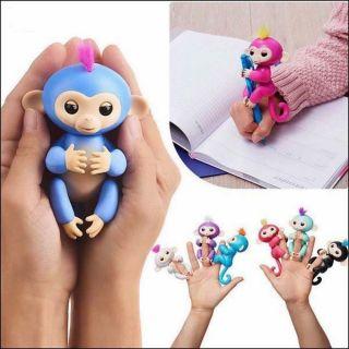 Khỉ tương tác. Bạn của trẻ thơ