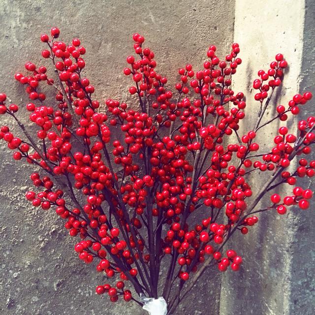 50 chùm Đào Đông Đỏ