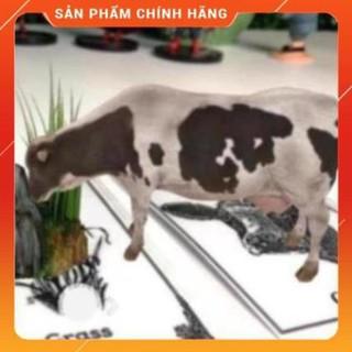 THẺ ANIMAL 4D – THẾ GIỚI ĐỘNG VẬT TRÊN ẢNH 4D