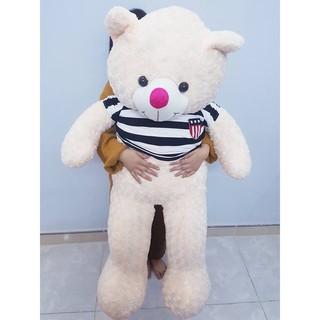 Gấu bông Teddy Cao Cấp khổ vải 1m4 Cao 1,2 màu TRẮNG HỒNG