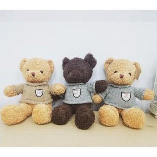 ĐCTE: Gấu Teddy áo len 40 NA – Ilahui