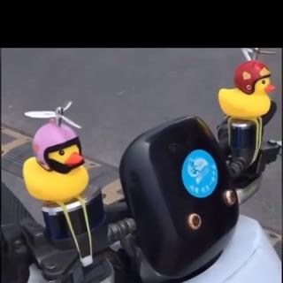 Combo 2c vịt gắn xe máy phát sáng