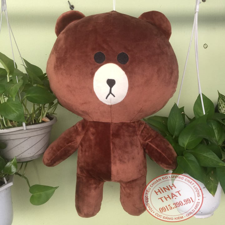Gấu bông Brown 50cm so cute