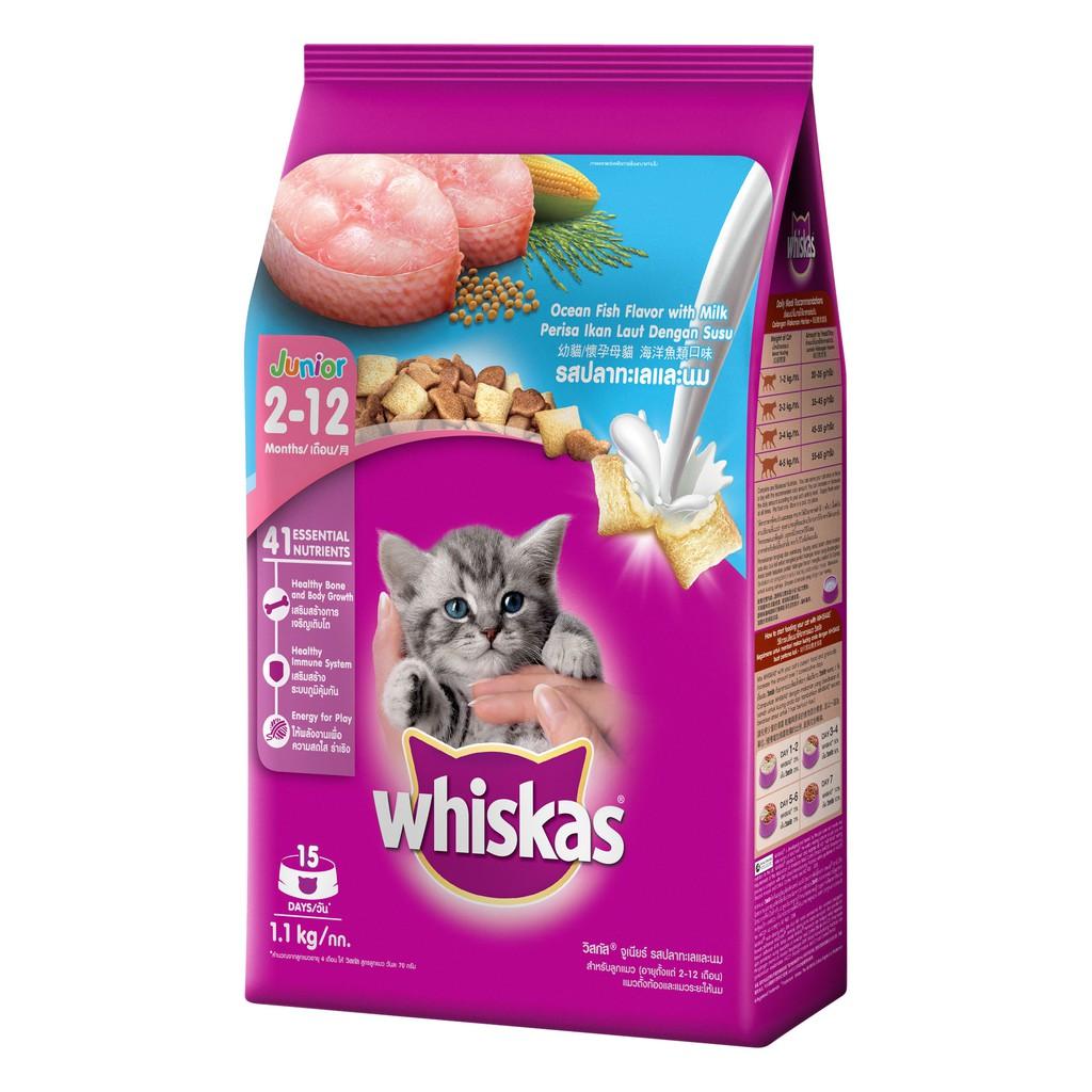 [Mã 1510FMCGSALE giảm 8% đơn 500K] thức ăn dành cho mèo con vị sữa và cá biển 1.1kg