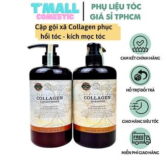 Cặp dầu gội xả Collagen Mefaso Italia phục hồi tóc hư tổn. dầu gội, dầu xả collagen tóc chắc khỏe, mềm mượt thumbnail