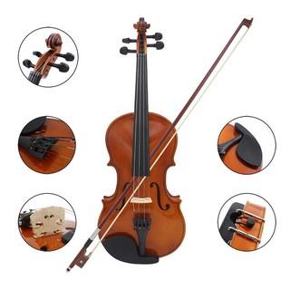 Đàn Violin cao cấp Deviser V30 4/4 FULLBOX ( Mặt gỗ vân Sam )