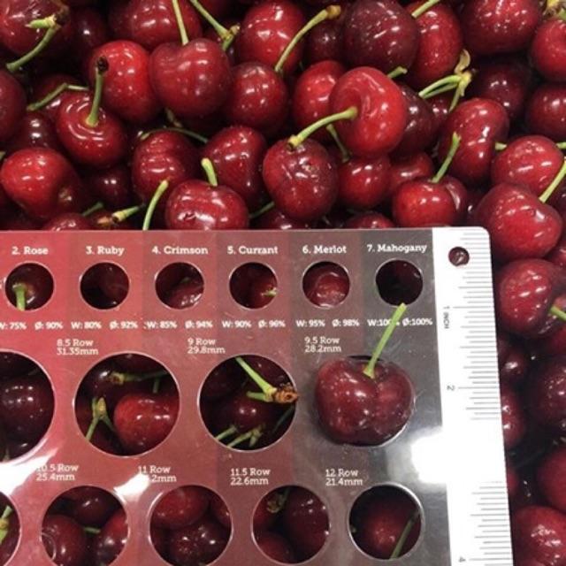 Cherry Mỹ nhập khẩu tại cảng