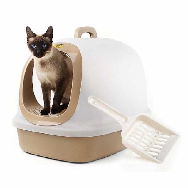 Nhà Vệ Sinh Cho Mèo 🐈🐈