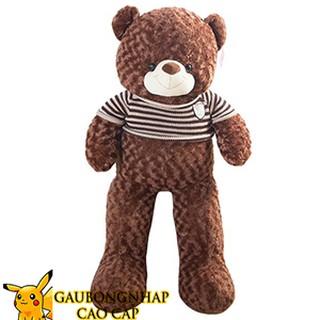 Gấu bông teddy áo len cao cấp màu socola khổ vải 1m6 chiều cao thật 1m4