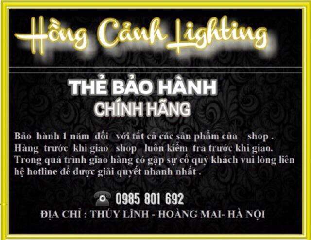 Đèn  Trần Trang Trí Hiện Đại MS023-8+4