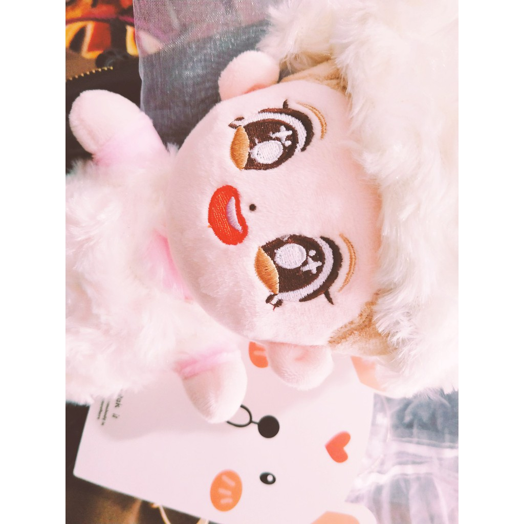 Doll (búp bê thần tượng) EXO 20cm [hàng order]