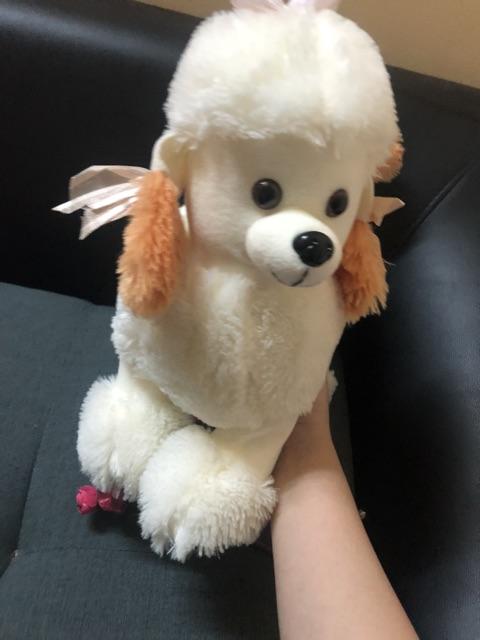Chó bông xinh hàng si + cừu hồng siêu xinh 79k/1con
