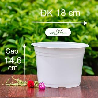 [ Sỉ từ 20 cái] Chậu nhựa trắng T18 (18×14.6 cm) trồng cây, trồng hoa cao cấp