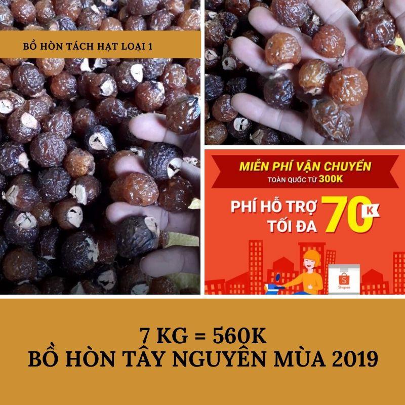 Bồ hòn tách hạt giá sỉ <80k/kg>
