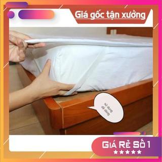 🔰 MUA NGAY 🔰 Tấm lót bảo vệ nệm cotton hàn quốc KT: m4/m6/m8/2m2 giá sỉ