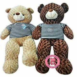 Gấu Teddy long xoắn 1m