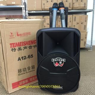 Loa kéo karaoke chính hãng Temeisheng bass 30, 2 micro không dây hát hay, rẻ. Loa karaoke bluetooth hay giá rẻ A12-65 thumbnail