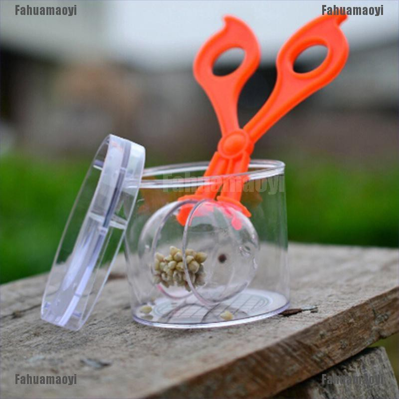 fahuamaoyi.th Children school plant insect biology study tool set for kids