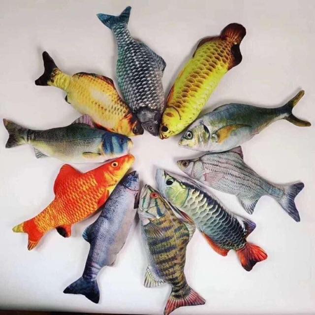 Cá Nhảy Hot TikTok