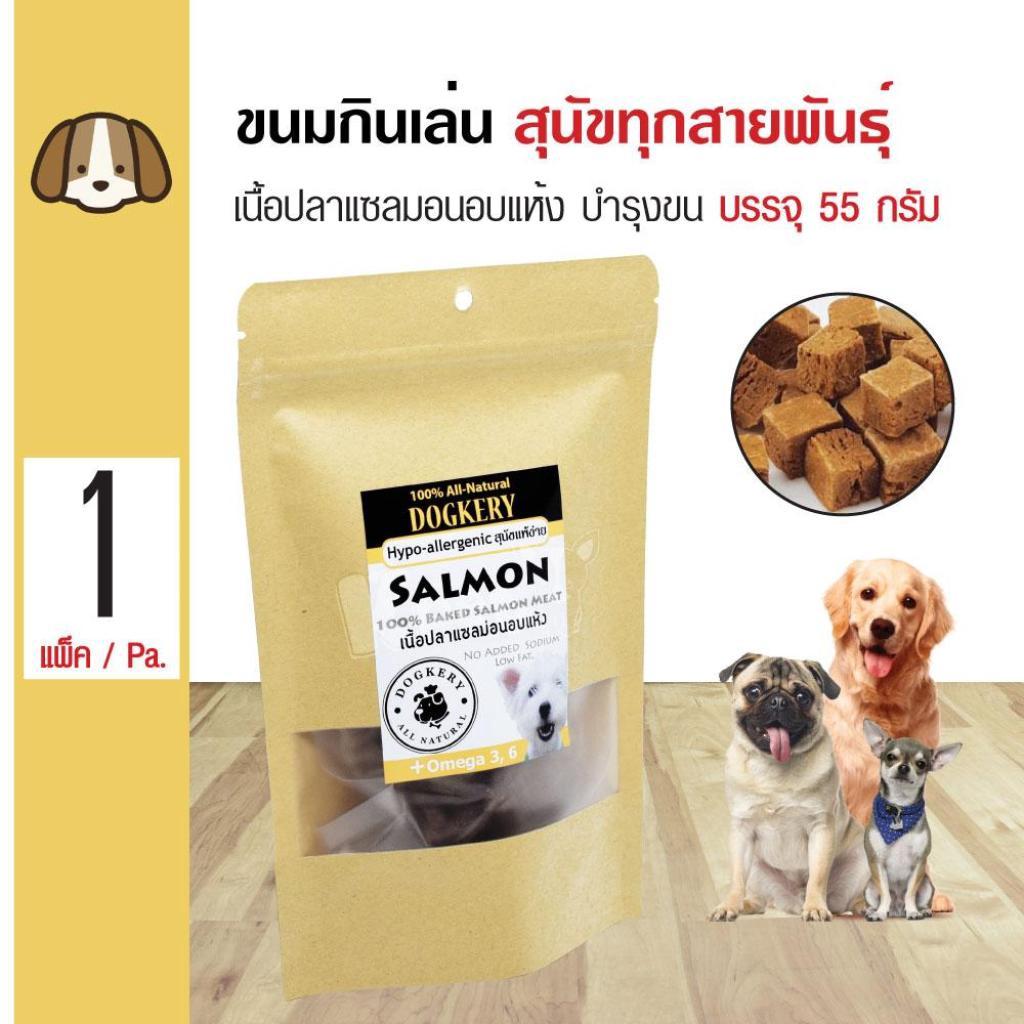 Dogkery Baked Salmon ขนมสุนัข ขนมกินเล่น เนื้อปลาแซลมอนอบแห้ง 100% สำหรับสุนัขทุกสายพันธุ์ (55 กรัม/แพ็ค)ogkery Baked Sa