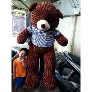 [Mã TOYJULY hoàn 20K xu đơn 50K] [NHẬP MÃ ToygundamGIẢM 15%]Gấu bông teddy khổ 2m ( nhiều màu)