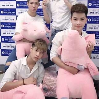 – Heo (lợn ) bông khổ vải 1m4 chiều dài 1m1 cao cấp