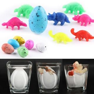 Trứng khủng long tự nở trong nước [Có sẵn]
