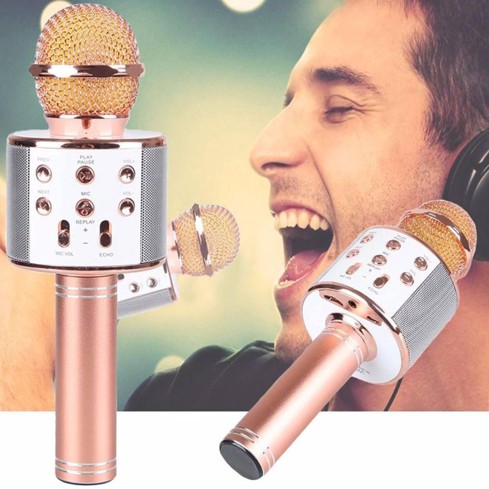 MIC TRÒN  hát karaoke