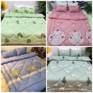 Combo ga giường 5 món chăn phao dày dặn như hình đc chọn mẫu