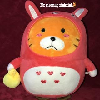 Gấu bông Mèo cosplay Tororo