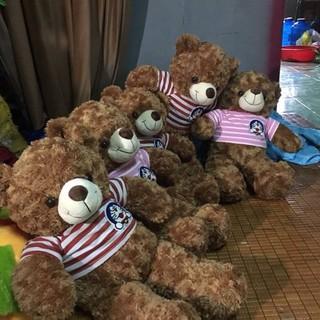 Gấu Bông Teddy Cao 1m Hàng VNXK Loại 1 Cực Đẹp Giá Chất.