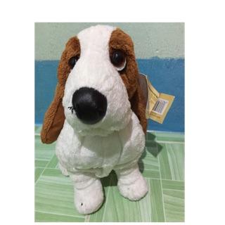 Chó Hush Puppies mới 100%