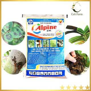 Thuốc đặc trị thối đen hoa lan Alpine 100g