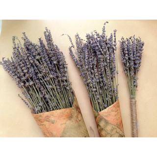 Bó hoa Lavender khô thumbnail