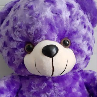 Gấu nhồi bông teddy 70cm