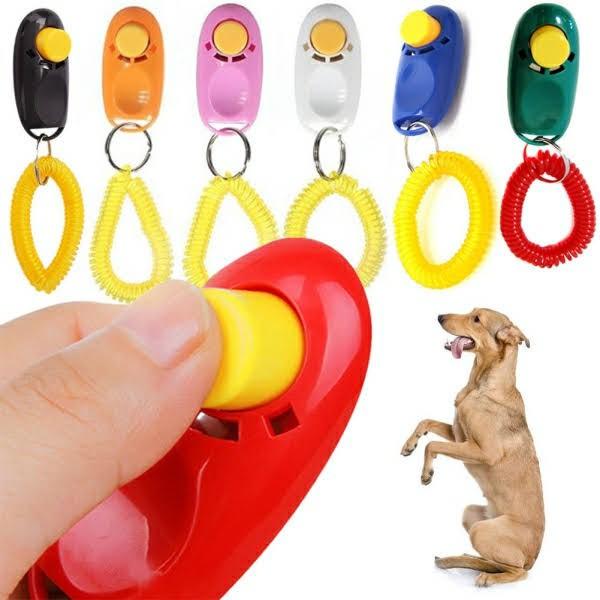 sử dụng Clicker huấn luyện chó