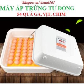 Máy ấp trứng tự động cao cấp 54 quả(full hộp xốp)