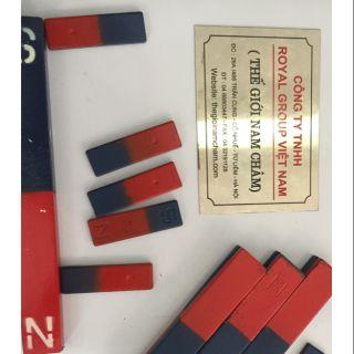 SALE SẬP SÀN Combo 10 chiếc nam châm chữ I 48mm