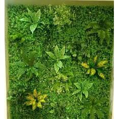 Thảm cỏ tai chuột,thảm cỏ nhân tạo 40 x 60cm ( có ảnh thật)
