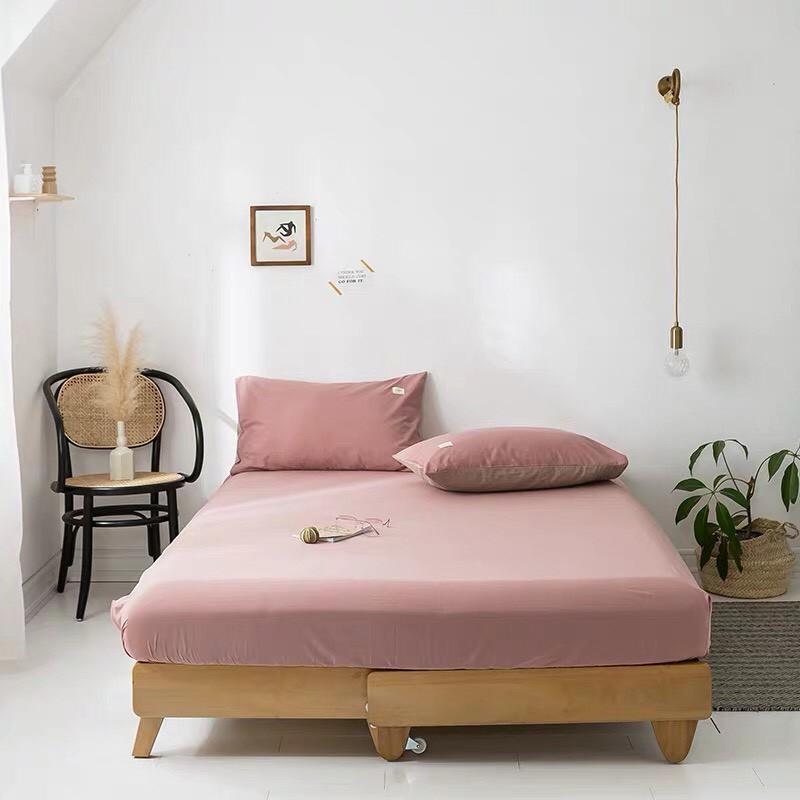 Sét ga gối cotton Tici phong cách hàn Quốc ( không kèm ruột )