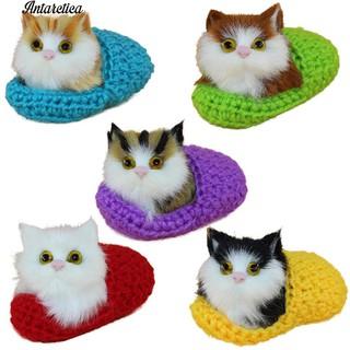 Đồ Chơi Hình Mèo Năm Cánh Cho Bé