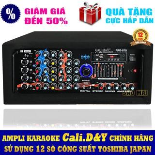 Sale – Amply Bluetooth karaoke nghe nhạc gia đình CALY.D&Y PRO-979