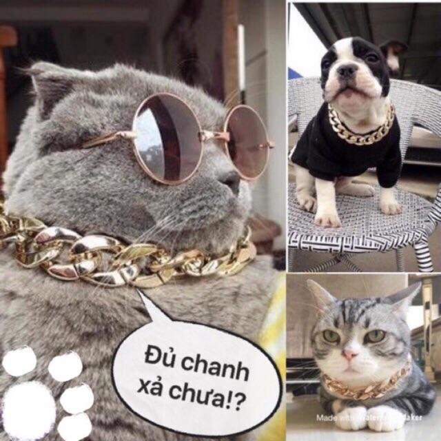 Dây chuyền rich kid cho chó mèo