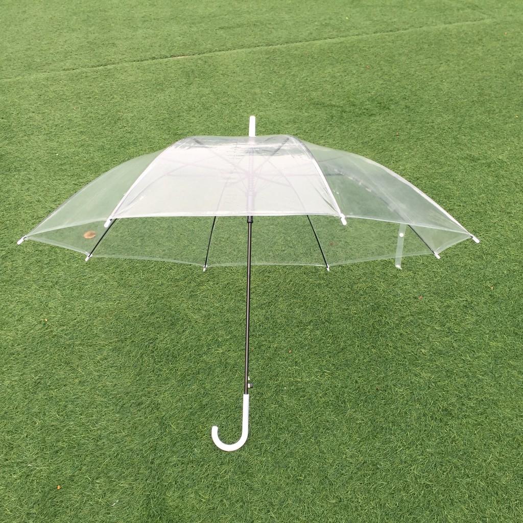 Ô trong suốt - Dù trong suốt - Ô dù đi mưa trong suốt